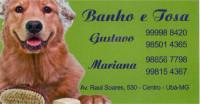 Cantinho Animal | Banho e Tosa