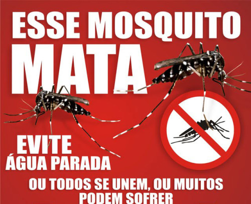 Dengue 02