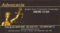 Dr. André Luiz Carneiro Gonzaga   OAB/MG 112.625